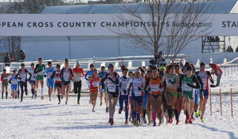 Cross Country winter